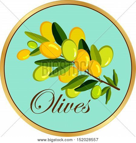 vector illustration of olive branch on a round shape emblem