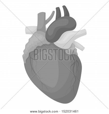 Heart icon in monochrome style isolated on white background. Organs symbol vector illustration.