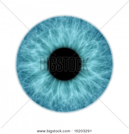 An illustration of a blue isolated iris