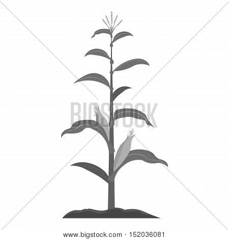 Corn icon monochrome. Single plant icon from the big farm, garden, agriculture monochrome.