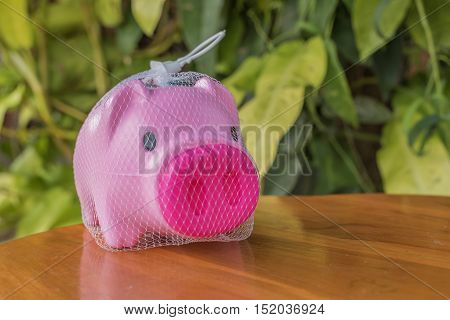 piggy bank isolated on background, saving money.