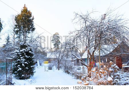 rural house covered with snow in Russian village