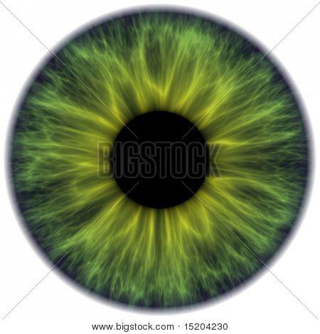 dark green iris texture