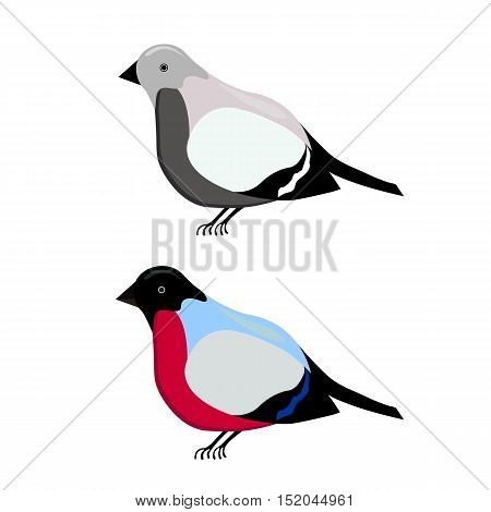 bullfinch cartoon illustration in color and black and white, isolated on a white background
