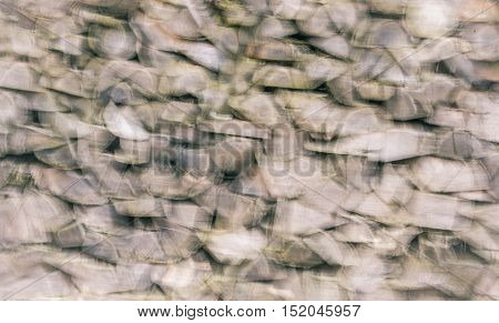 Abstract blurry background - Blurry settings with a bunch of firewood chopped logs stacked in a pile great abstract background.