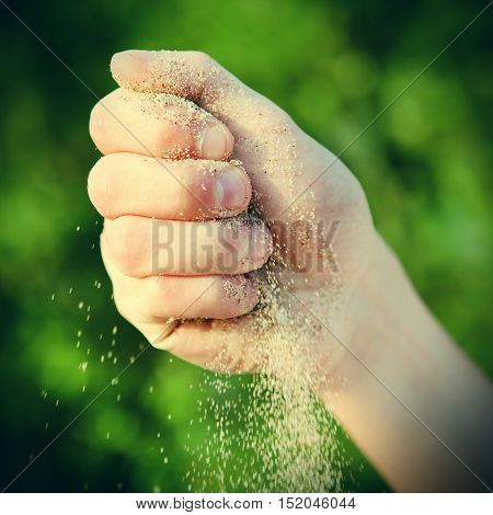 Toned Photo of Sand in the Hand on the Nature Background