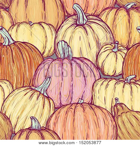Bright seamless pattern with pumpkins for thanksgiving day halloween etc. Vector sketchy illustration