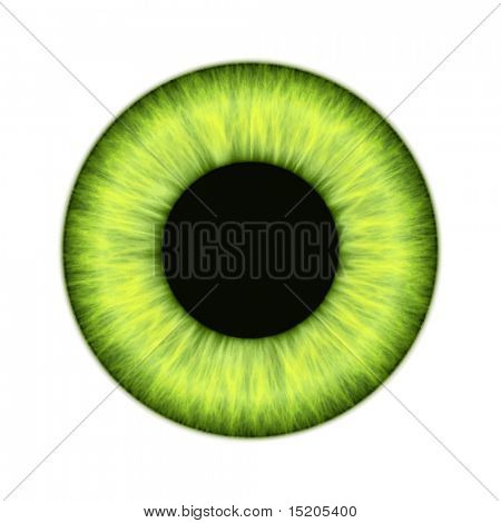 An illustration of a beautiful colored iris texture vector