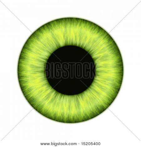 Eine Abbildung eines schönen farbigen Iris Textur Vektors