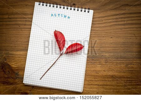 autumn background with notebook on a wooden top view