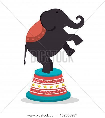 circus elephant festival show over white background. vector illustration