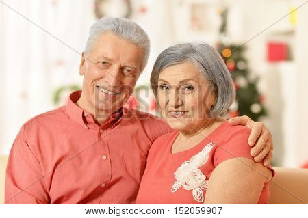 Portrait of amusing old couple at Christmas