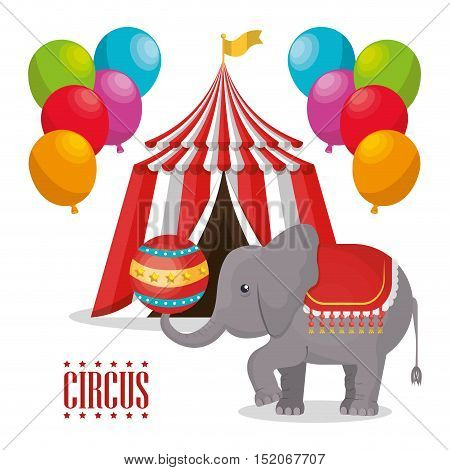 red and white striped tent circus with balloons and elephant show icon over white background. colorful design. vector illustration
