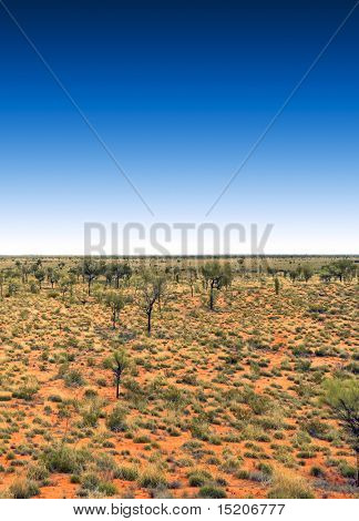 the australia outback with a deep blue sky