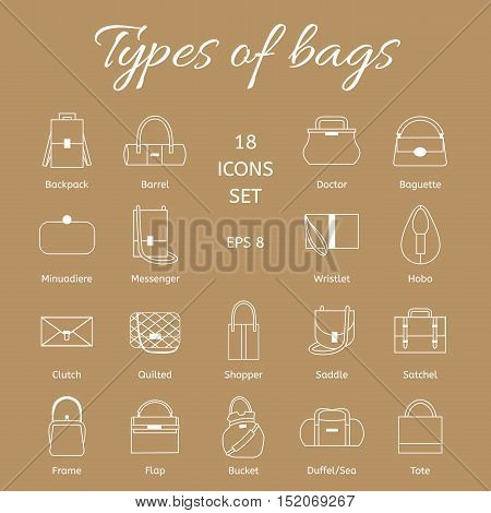 Collection of different models of handbags. Set of white line of icons. Vector