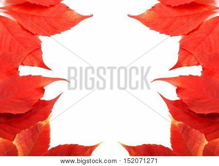 Frame Of Autumn Leaves Background With Copy Space