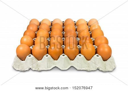 Fresh brown eggs in paper tray isolated on white background with clipping path