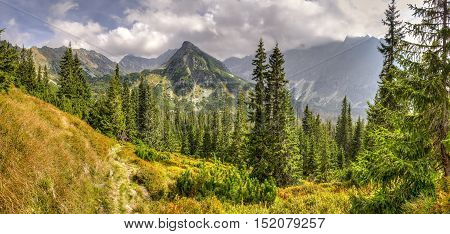 Beautiful mountain panorama. Mountain peaks in the summer scenery.