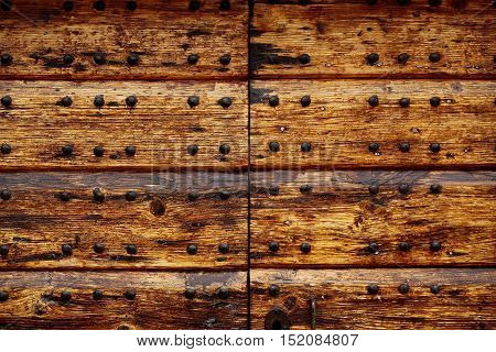 Wooden door old dirty brown wood panel surface with button head rivets on timber background