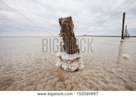 Saline (salt Lake) Baskunchak.