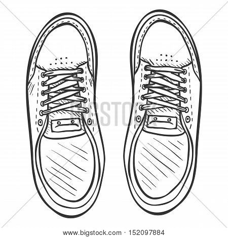 Vector Sketch Illustration - Pair Of Skaters Shoes. Top View