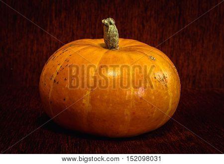 Big orange pumpkin on a dark burgundy background