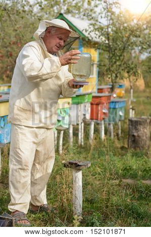 Beekeeper apiary puts on a bowl of water for bees beekeeping
