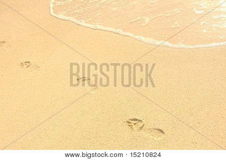 Footprints In Sand On Beach