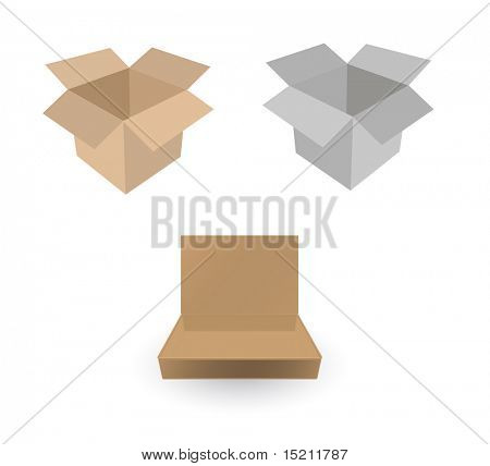 vector cardboard box on white