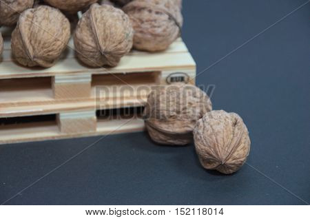 Close-up photo of walnuts on pallet prepared for transport. On indigo blue background.
