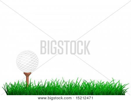 golf ball in green grass