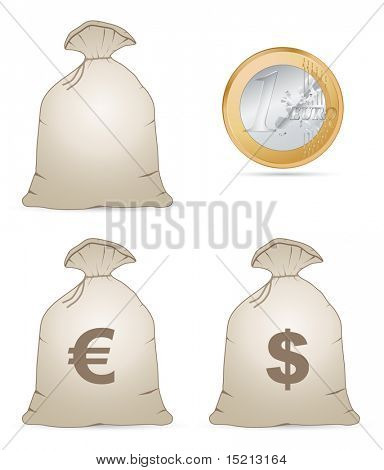vector money bag with euro coin