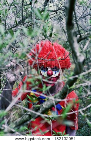 closeup of a scary evil clown in the woods, seen through the branches of a tree