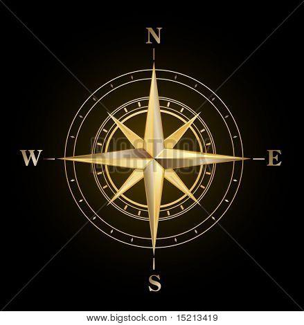 vector golden compass symbol