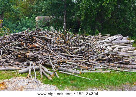 Firewood piled a heap in a field near the house