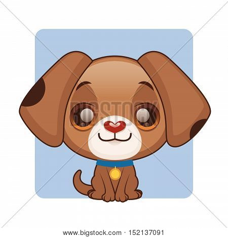 Cute brown puppy with a collar sitting