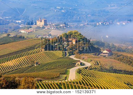 Narrow road runs through vineyards as small village on background at foggy morning in Piedmont, Northern Italy.