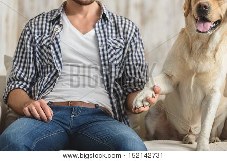 close up of a boy playing with his pet at home