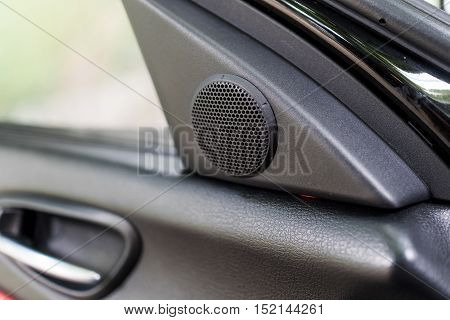 Small tweeter speaker on sport car door
