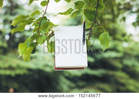 Blank spiral notepad and pen suspended on tree branch with bright green leaves. Mock up