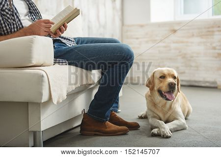 puppy lying on the floor while its owner reading a book