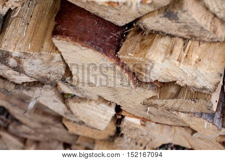 Stacked chopped firewood prepared for winter closeup
