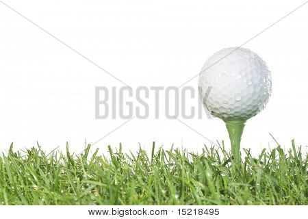 Golf ball on a tee with grass and white background in damp conditions.