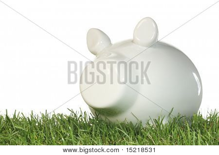 Piggy bank on grass with a white background.