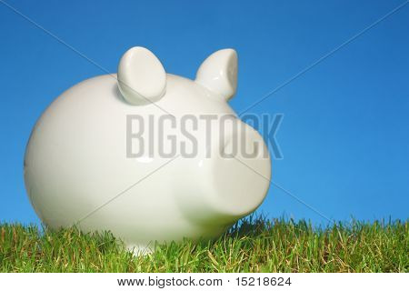 Piggy bank on grass with a blue background.