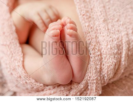 tender newborn baby feet with tiny toes wrapped in pink diaper, macro