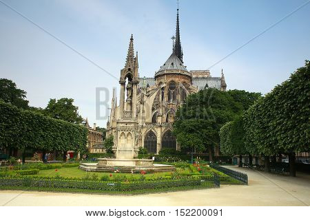the Cathedral of Notre Dame Paris France