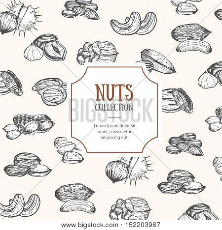 Nuts Package Design Hand Draw Sketch to Promote Your Product. Vector illustration
