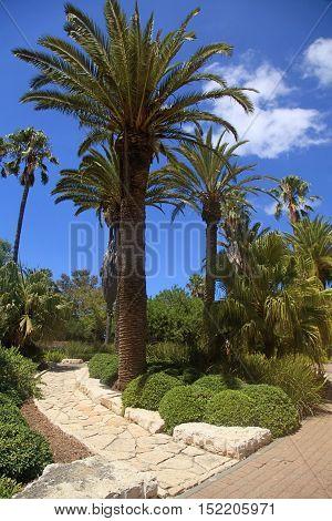 picturesque view in the Park Ramat Hanadiv, Memorial Gardens of Baron Edmond de Rothschild, Zichron Yaakov, Israel