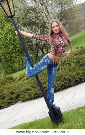 Beautiful Girl Dancing On The Pole